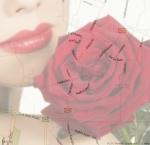 סוויטות בעין ורד סוויטות בעין ורד